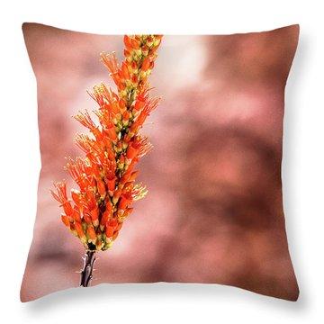 The Ocotillo Throw Pillow by Onyonet  Photo Studios