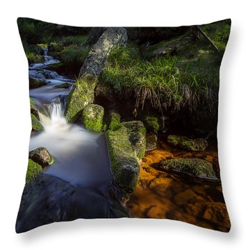 the Oder in the Harz National Park Throw Pillow
