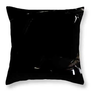 The Office Reflection Throw Pillow by Paul Job