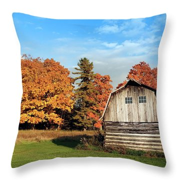 Throw Pillow featuring the photograph The Old Barn In Autumn by Heidi Hermes