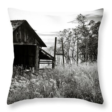 The Old Shed Throw Pillow