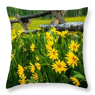 The Old Fence Throw Pillow