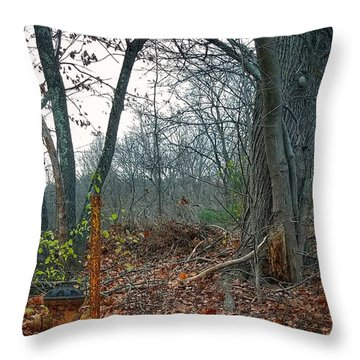 The Old Fire Hydrant Throw Pillow