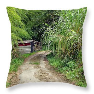 Throw Pillow featuring the photograph The Old Forest Road by Yali Shi