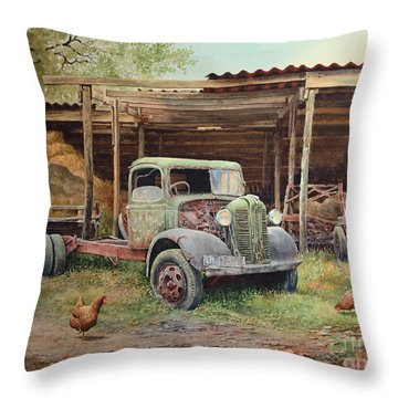 The Old Pole Barn Throw Pillow
