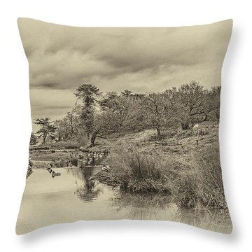 The Old Pond Throw Pillow