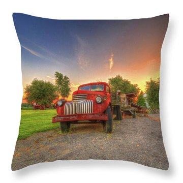 Country Treasure Throw Pillow