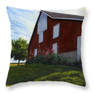 The Old Stucco Barn Throw Pillow