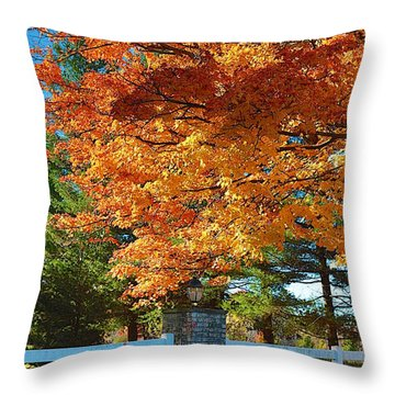 Throw Pillow featuring the photograph The Old Yard Light by Robert Pearson