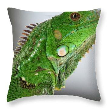 The Omnivorous Lizard Throw Pillow