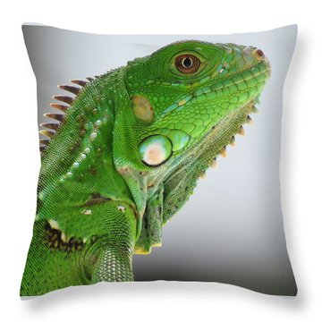 The Omnivorous Lizard Throw Pillow