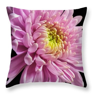 The One And Only Dahlia  Throw Pillow