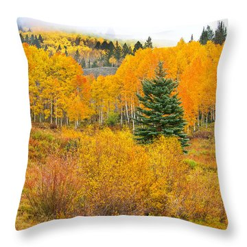 The One That Stands Out  Throw Pillow