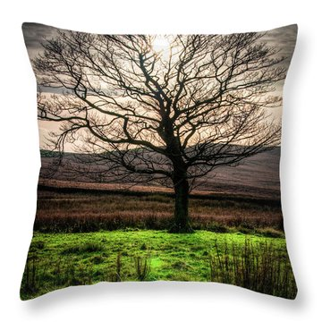 The One Tree Throw Pillow