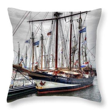 The Oosterschelde Throw Pillow
