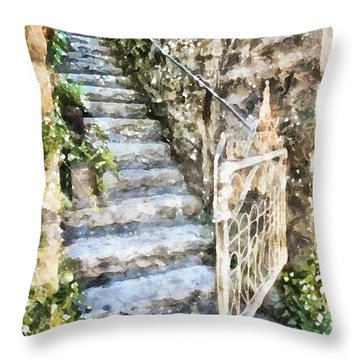The Open Gate Throw Pillow by Shirley Stalter