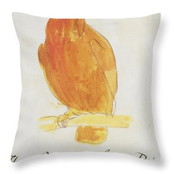 The Orange Color Bird Throw Pillow