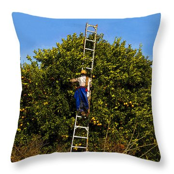 The Orange Picker Throw Pillow by David Lee Thompson