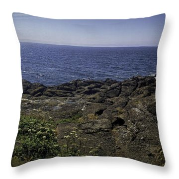 Throw Pillow featuring the photograph The Oregon Coast by Ryan Smith
