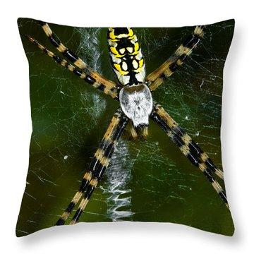 The Original Zig-zag Stitch Throw Pillow by Christopher Holmes