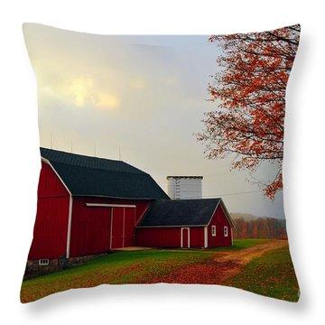 The Orignal Historic Eggle Farms Barn That Burned Down Throw Pillow