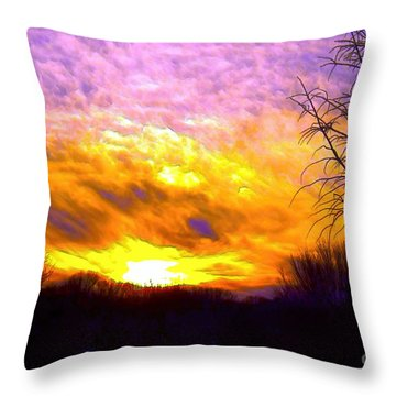 The Other Side Of The Rainbow Throw Pillow