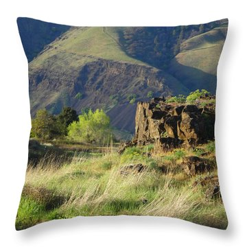The Outcrop Throw Pillow