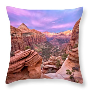 The Overlook Throw Pillow by Eduard Moldoveanu