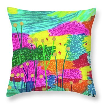 The Painted Desert Redux Throw Pillow