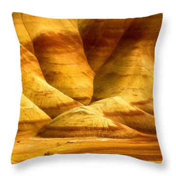 The Painted Hills Throw Pillow