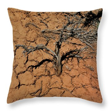The Parched Earth Throw Pillow