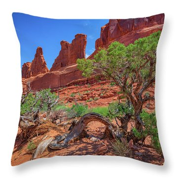 The Park Avenue Trail Throw Pillow