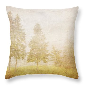 The Past Is Gone Throw Pillow