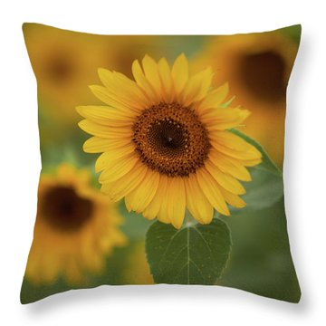 The Patch Of Sunflowers Throw Pillow