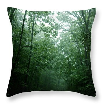 The Path Ahead Throw Pillow by Clayton Bruster