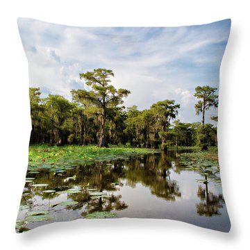 The Path Among Throw Pillow by Lana Trussell