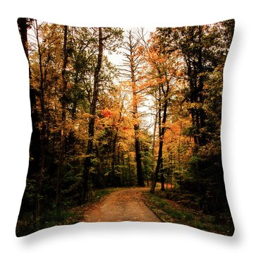 The Path Throw Pillow by Annette Berglund