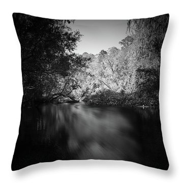 The Path Before Me, No. 5 Throw Pillow