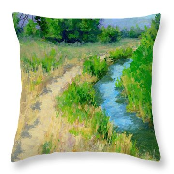 The Path By The Ditch Throw Pillow