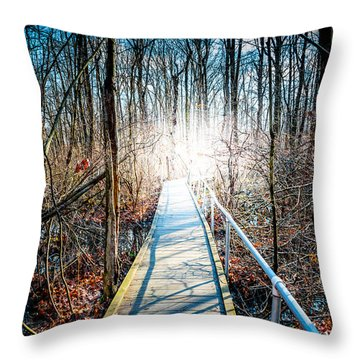 The Path Home Throw Pillow