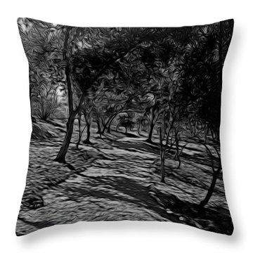 The Path In Abstract Throw Pillow