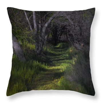 The Path In April Throw Pillow