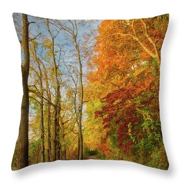 Throw Pillow featuring the photograph The Path In Fall by Mark Dodd