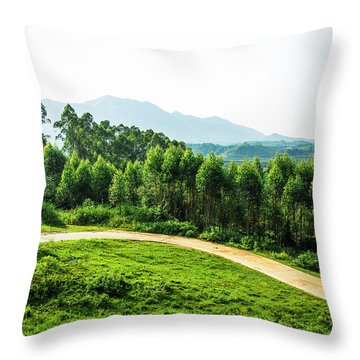 Throw Pillow featuring the photograph The Path In The Mountain by Carl Ning