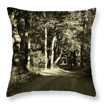 Throw Pillow featuring the photograph The Path Less Traveled by John Schneider