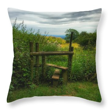 Throw Pillow featuring the photograph The Path Most Traveled  by Connie Handscomb
