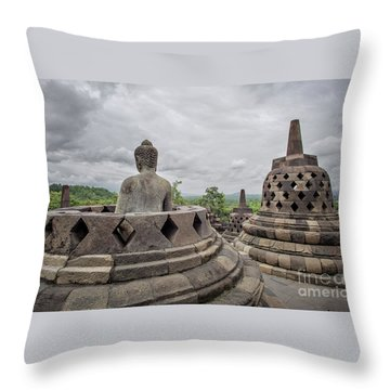 The Path Of The Buddha #5 Throw Pillow