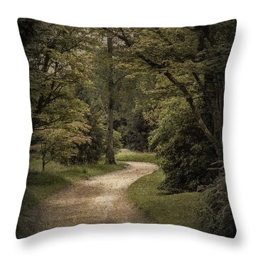 Throw Pillow featuring the photograph The Path by Ryan Photography