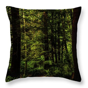 Throw Pillow featuring the photograph The Path by TL Mair