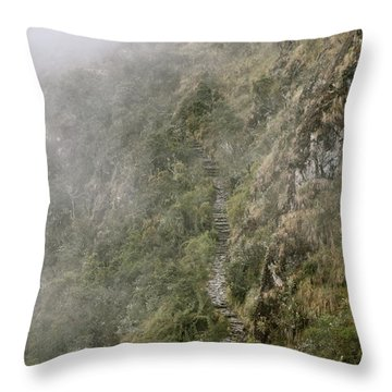 The Path To Self-discovery Throw Pillow